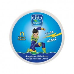 nadec triangles cheese 16 portions 240 g